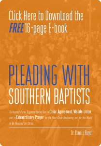 Pleading with Southern Baptists Cover-Blog